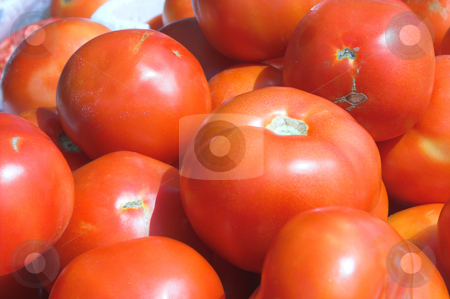 Tomatoes stock photo, Fresh tomatoes for sale at a farmers market. by Robert Byron