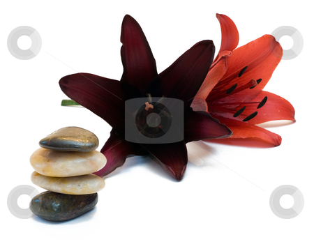 Lifestyle Balance stock photo, The concept of peace and balance by using a pile of river rocks and some fresh lillies by Richard Nelson