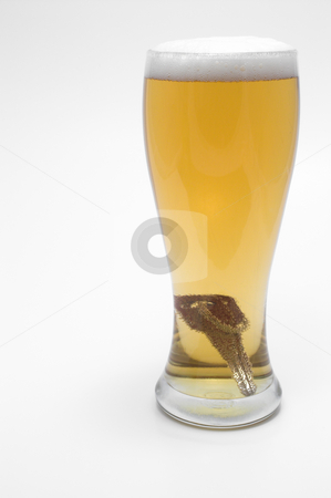 Car Keys dropped in beer stock photo, Drunk Driving Concept - Beer, and Car Keys by Robert Byron