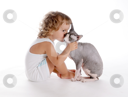 Boy and Cat 3 stock photo, Little Curly-headed Boy and Cat by Valeriy Mazur
