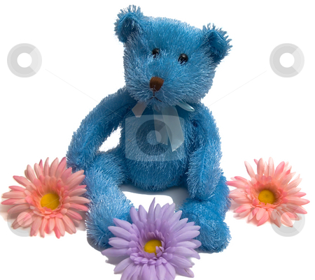 Blue Teddy Bear stock photo, Isolated Blue Teddy Bear with flowers on a white background by Johan Knelsen