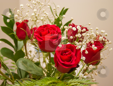 Bouquet of Red Roses stock photo, Bouquet of red roses for someone special by Johan Knelsen