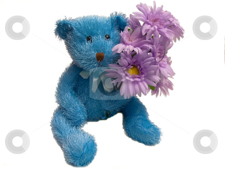 Furry Blue Teddy Bear Holding Flowers stock photo, Isolated Blue Teddy Bear with Flowers on white background by Johan Knelsen