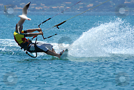 The kite Boader and the Seagull stock photo, Kite surfer and seagull at full speed by Serge VILLA