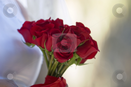 Wedding Roses stock photo, Shallow focus shot of a red rose bouquet by Scott Griessel