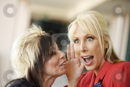 Office Gossip stock photo, Two creative businesswomen share a secret by Scott Griessel