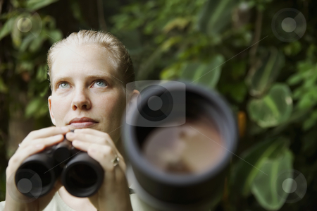 Pretty Woman with Binoculars in the Rain Forest stock photo, Pretty nature guide with a telescope in the rainforest by Scott Griessel