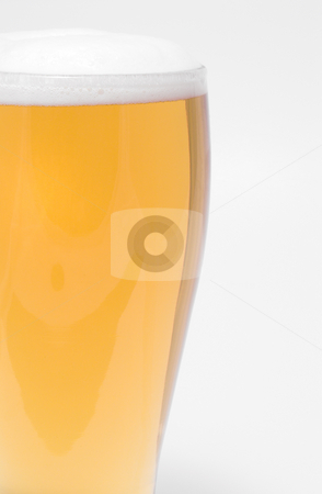 Beer stock photo, A pilsner glass of ice cold beer. by Robert Byron