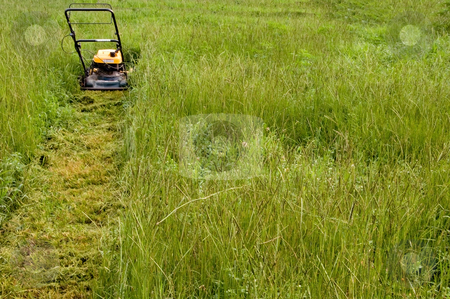 Mowing the Lawn stock photo, A lawnmower on the lawn in the afternoon. by Robert Byron