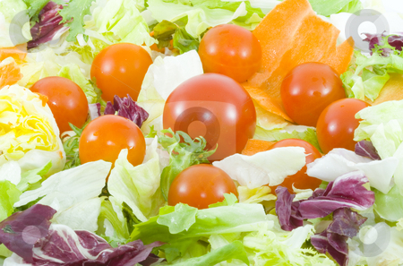 Vegetable Salad stock photo, Green salad with tomatoes - healthy eating - vegetables - close up by Petr Koudelka