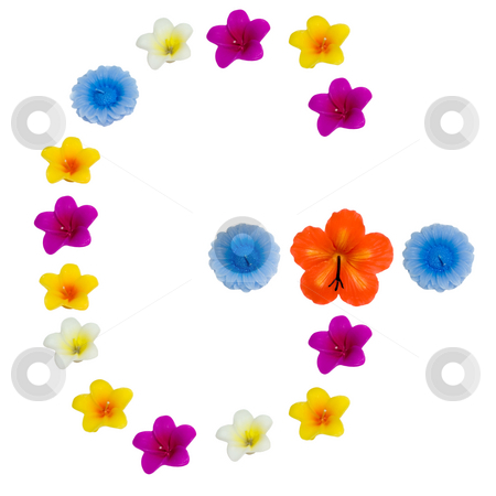 The Letter G stock photo, A letter of the alphabet made of wax flowered candles, isolated against a white background by Richard Nelson