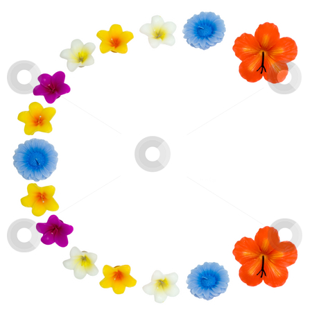 The Letter C stock photo, A letter of the alphabet made of wax flowered candles, isolated against a white background by Richard Nelson