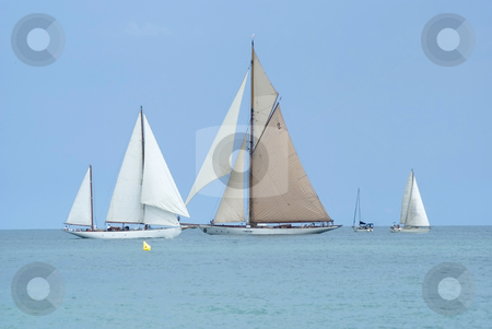 Regatta stock photo, Old Sailing Boat during a regatta in Antibes (French Riviera) by Serge VILLA