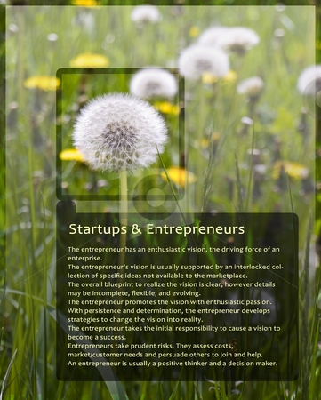 Sample Information Sheet for Entrepreneurs With Dandelion stock photo, Sample Information Sheet for Entrepreneurs With Dandelion Black Trim by Robert Davies