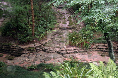 Stone Pathway stock photo, A stone pathway going into the forest by Kevin Tietz