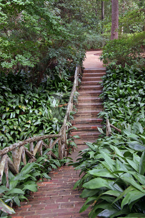 Brick Pathway stock photo, A brick pathway going into the forest by Kevin Tietz