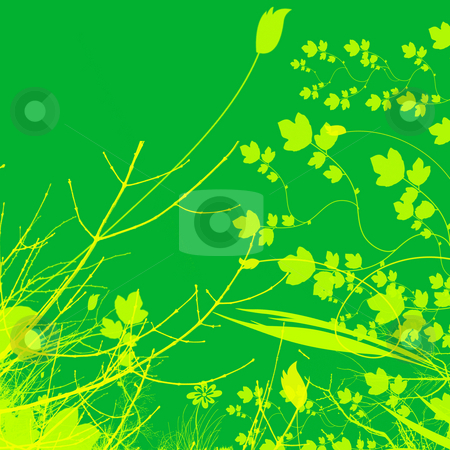 Green Plant and Flower Illustration Design stock photo, Green Plant and yellow Flower Illustration Design With Contrasting Background by Robert Davies