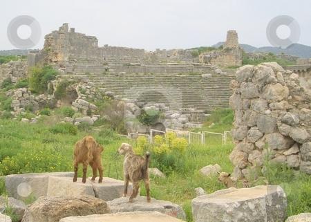 Ruins in Turkey stock photo,  by Jan Kraus