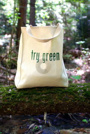 Ecologically Freindly Shopping Bag stock photo, Shopping bag made out of recycled materials, Ecologically  freindly, replaces plasic shopping bags. by Lynn Bendickson