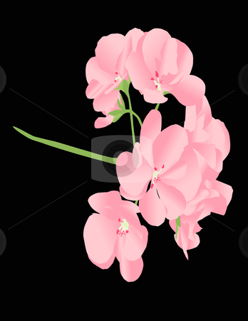 Pink Flower Illustration stock vector clipart, Pink flower vector illustration by John Teeter