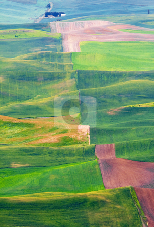 Undulations stock photo, Undulating hills of the Palouse with crop patterns of green and brown roll into the distance. by Mike Dawson