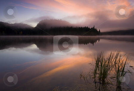 Misty Dawn stock photo, A cold mist rising off the still waters of Clear Lake in Washington as the sun rises. by Mike Dawson