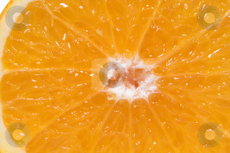 Orange fruit cross section stock photo, A cross section of a fresh and juicy orange. by Robert Byron