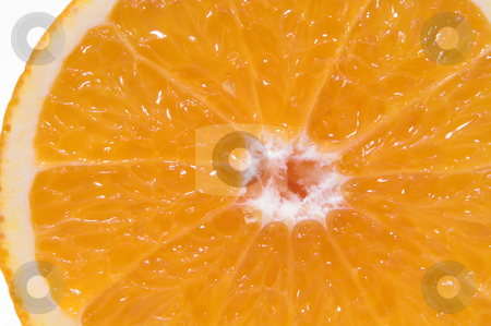Sliced Orange stock photo, A cross section of a fresh and juicy orange. by Robert Byron