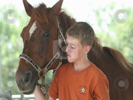 Boy leading horse stock photo, A boy leading a horse out to pasture by Lori Kirk