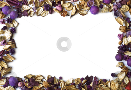 Dry flowers frame stock photo, Dry flowers' frame on the white background. by Sinisa Botas