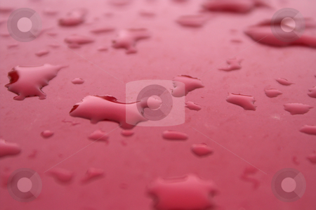 Water Beads stock photo, Water beads on the painted finish of a car. by Robert Byron