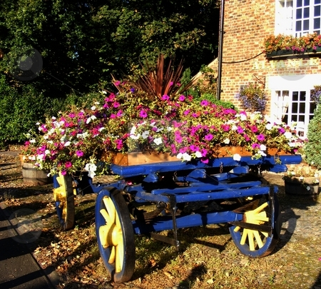 Flower Cart stock photo, Old horse drawn cart used for a flower display in the grounds of the Alvanley Arms pub, Cheshire England by Ray Roscoe