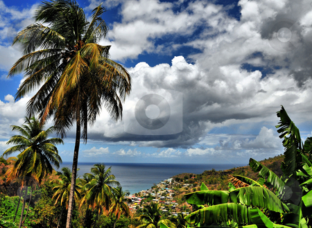 Palm Tree Overlook  stock photo, The view of a distant town on the shoreline of a tropical island from behind some majestic palm trees by Jeff Clow