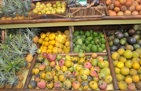Tropical Fruit Stand on the Island stock photo, Tropical fruits displayed on a homemade roadside stand by Jeff Clow