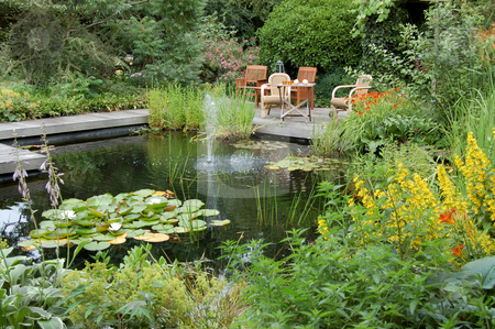 Summer Garden with a Pond stock photo,  by Karen Koomans