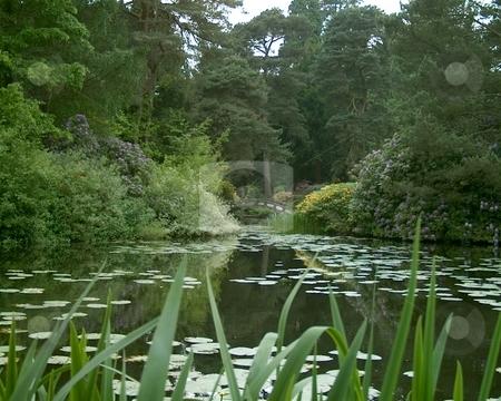 Nice View stock photo, Tatton Park Cheshire England by Ray Roscoe