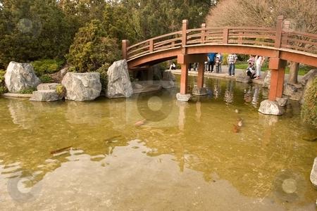 Japanese Friendship Garden stock photo, Japanese Friendship Garden is a walled section of Kelley Park in San Jose California by Mariusz Jurgielewicz