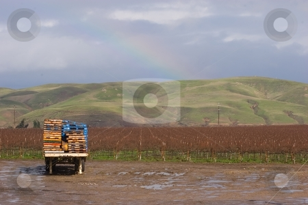 Gonzales stock photo, Winery near Gonzales, California by Mariusz Jurgielewicz