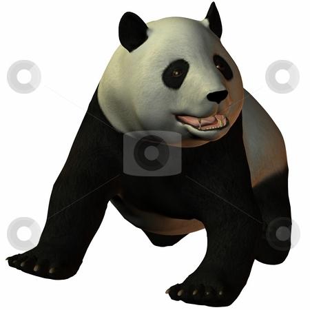 Toon Panda stock photo, 3D Render of an Toon Panda by Andreas Meyer