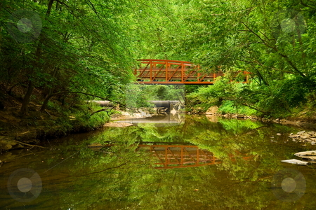 Natures reflection stock photo, Man made objects working with nature for a green environment by Jack Schiffer