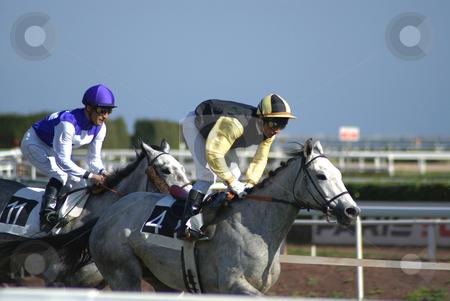 Horseback racing stock photo, Courses de chevaux sur hippodrome by Serge VILLA