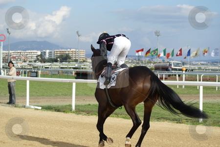 Racing Horse and jockey stock photo, Jockey and racing horse during a race by Serge VILLA