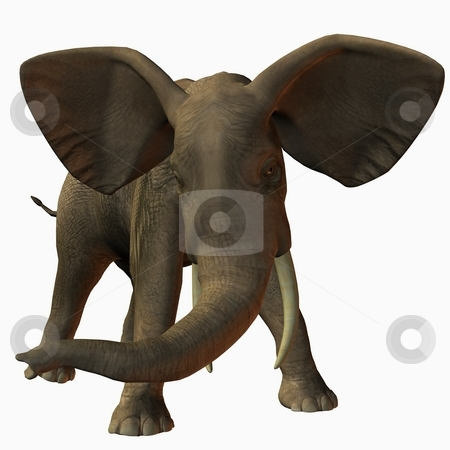 African Elephant stock photo, 3D Render of an African Elephant by Andreas Meyer
