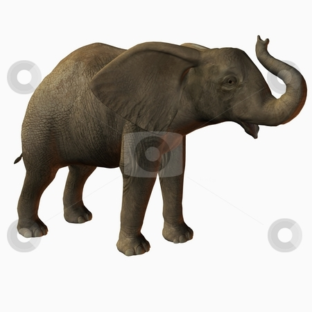 Baby Elephant stock photo, 3D Render of an Baby Elephan by Andreas Meyer