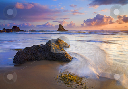 Covered by the Tides stock photo, A bit of kelp about to be covered by an incoming wave at Indian Beach as the setting sun adds color to the sky and water. by Mike Dawson
