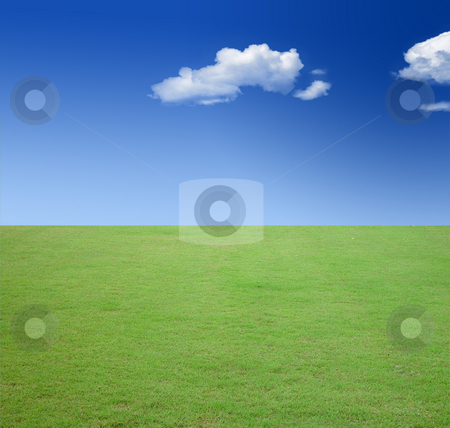 Spring landscape stock photo, Spring landscape - green fields, the blue sky and lots of copy space by Khoj Badami