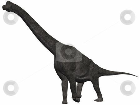 Brachiosaurus-3D Dinosaur stock photo, 3D Render of an Brachiosaurus-3D Dinosaur by Andreas Meyer
