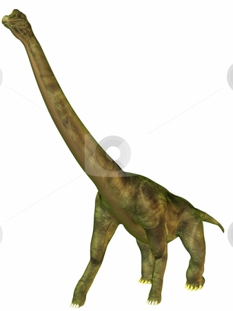 Brachiosaurus-3D Dinosaur stock photo, 3D Render of an Brachiosaurus-3D Dinosaur by Andreas Meyer