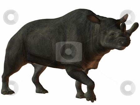 Brontotherium stock photo, 3D Render of an Brontotherium by Andreas Meyer