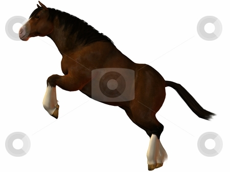 Charger Horse stock photo, 3D Render of an Charger Horse by Andreas Meyer